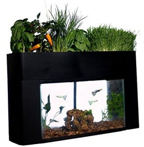 AquaSprouts Garden indoor garden kit