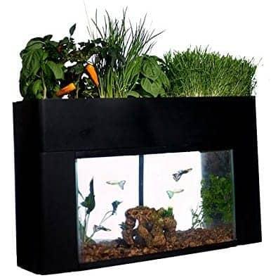 AquaSprouts Garden indoor garden kit