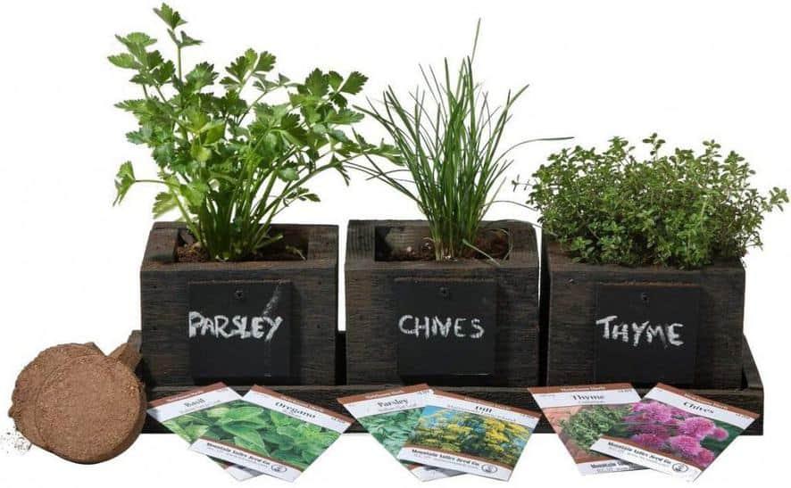 Cedar Planter Box indoor garden kit