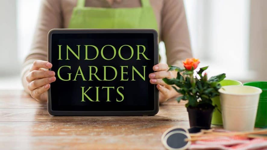 How to Choose the Best Indoor Garden Kit