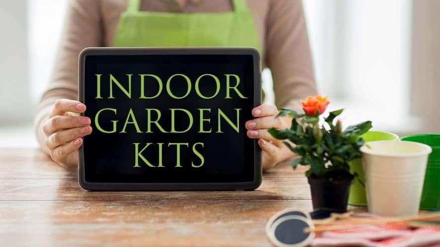 How to Choose the Best Indoor Garden Kit