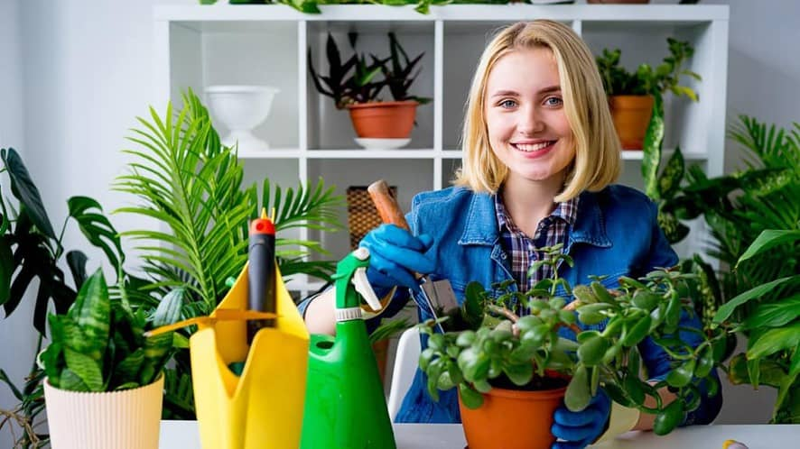 Indoor Gardening: A Beginner's Guide to Getting Started