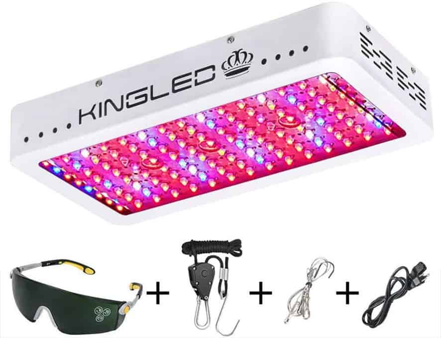 King Plus 1200W LED Grow Light for Indoor Plants