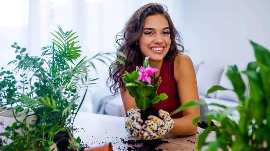 An Overview of Indoor Gardening