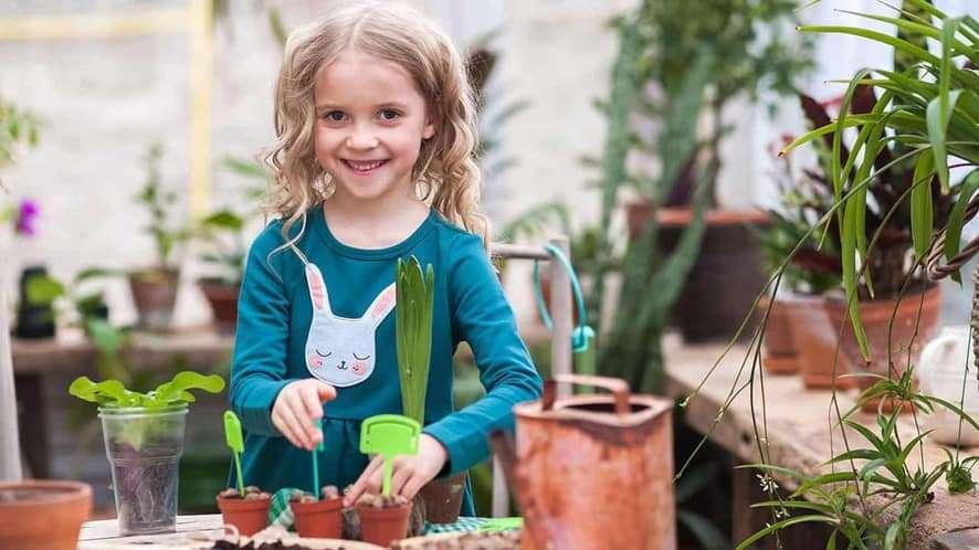8 Indoor Garden Kits for Kids