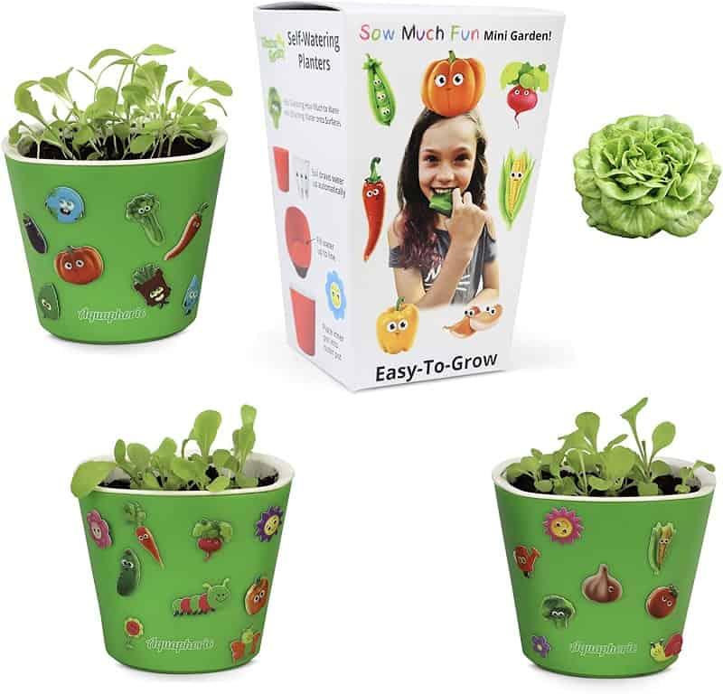 Garden Kit for Kids