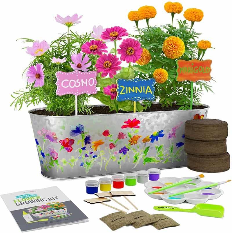 Indoor Garden Kit for Kids