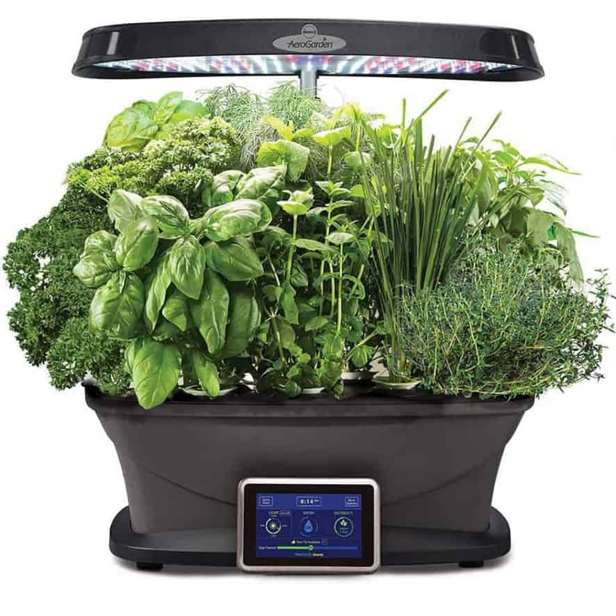 Herb Kits For Indoors: 13 Best Indoor Herb Garden Kits