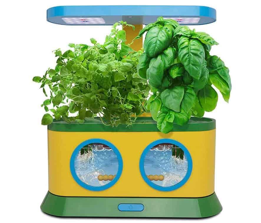 AeroGarden Herbie Kid's Indoor Garden Kit with Pizza Party Activity Kit