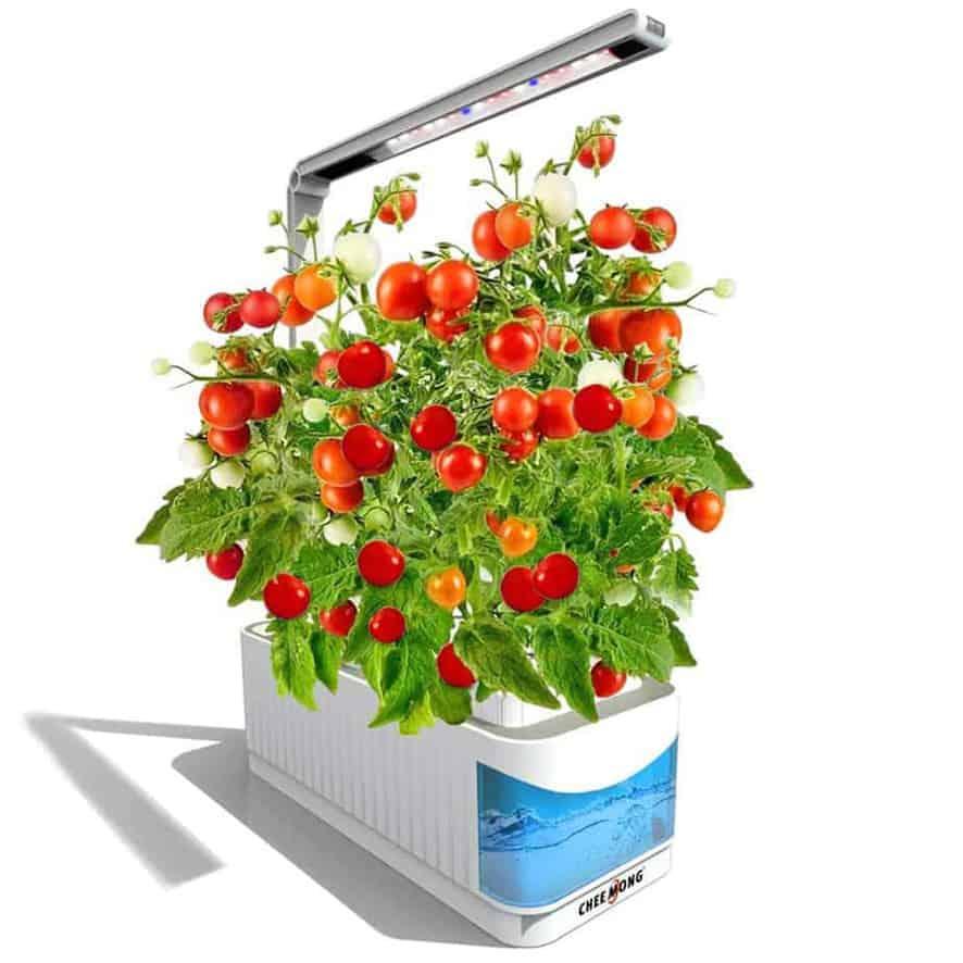 Chee Mong Indoor Herb garden Kit