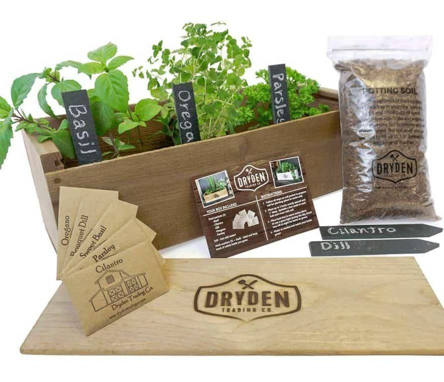 Dryden Trading Co. Indoor Herb Garden Kit