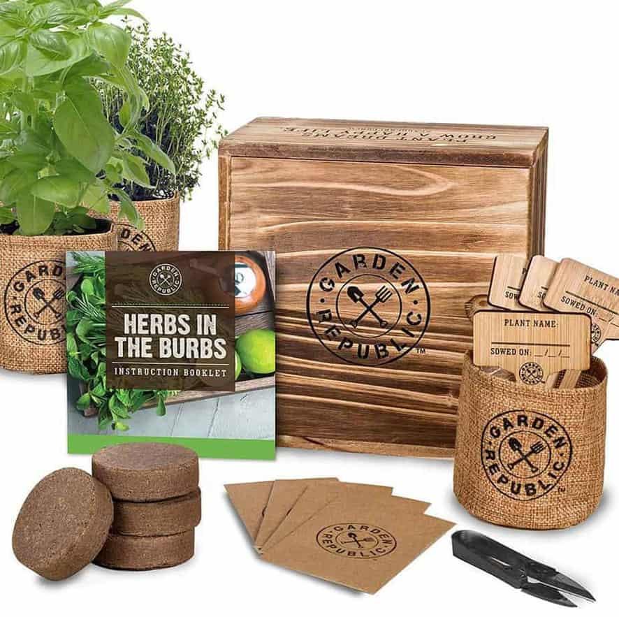 Garden Republic Indoor Herb garden Kit