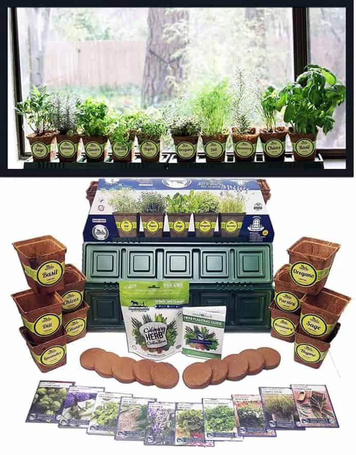 Sustainable Seed Company Indoor Herb garden Kit