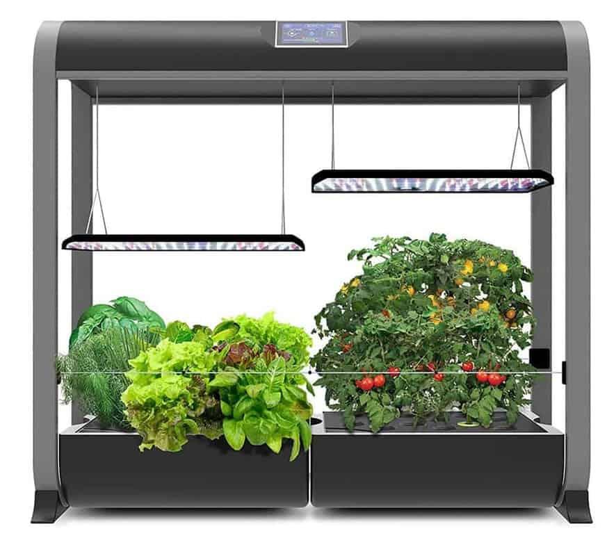 Indoor Farming Growing Your Own Vegetable Garden Indoor