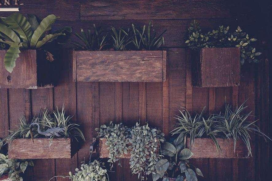 Indoor garden design ideas: wall planters
