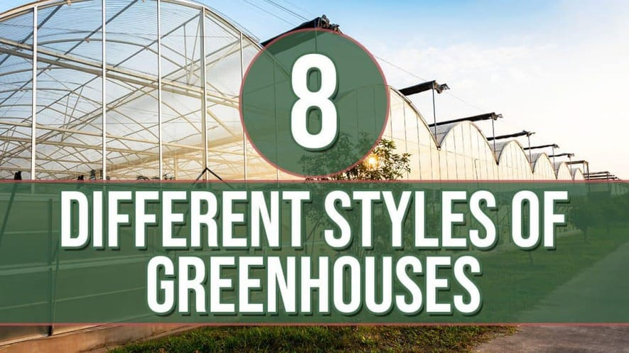 8 Different Styles of Greenhouses