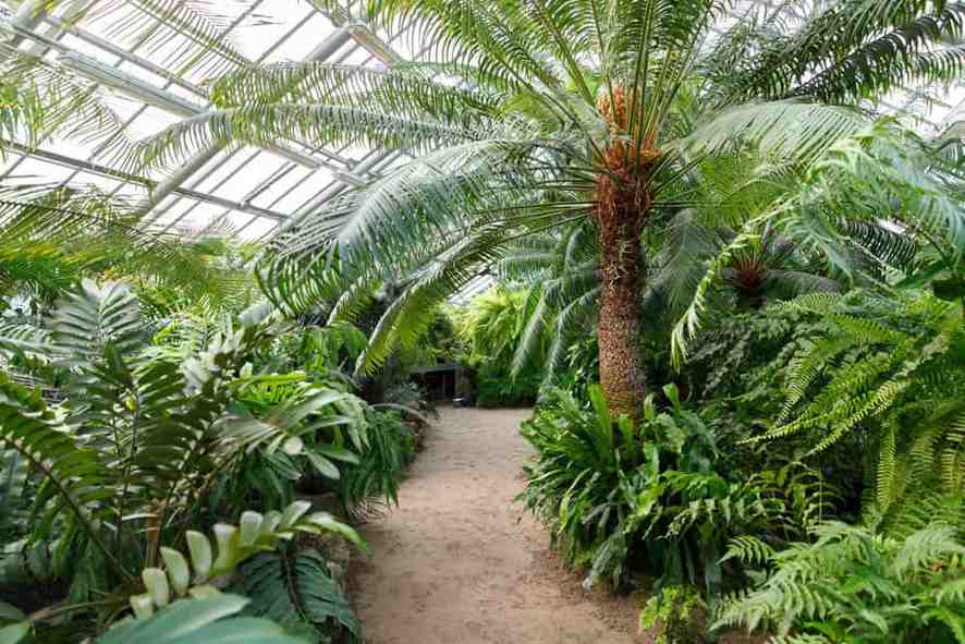 Start a Greenhouse: Controlled Climate