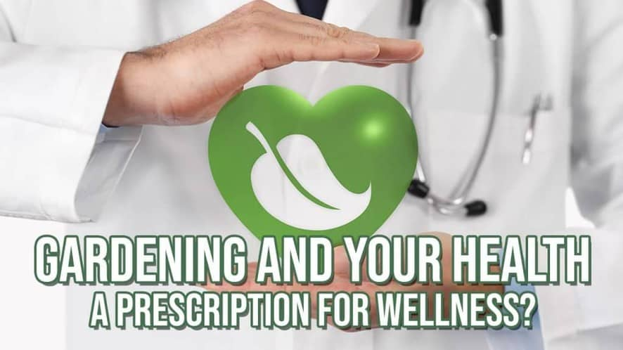 Gardening and Your Health: A Prescription for Wellness?