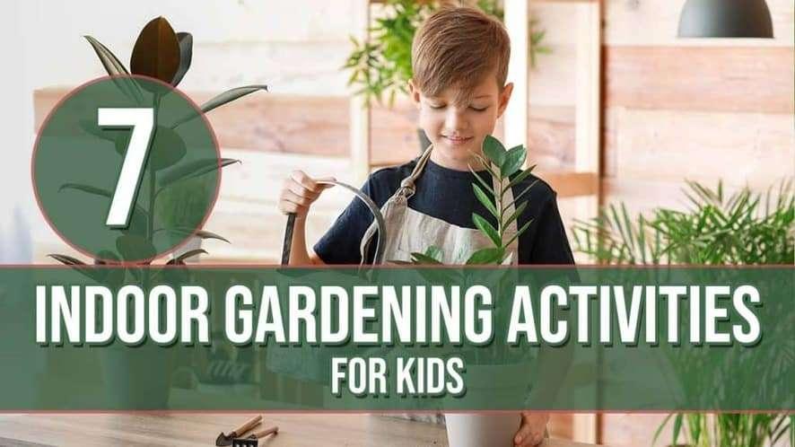 7 Indoor Gardening Activities for Kids