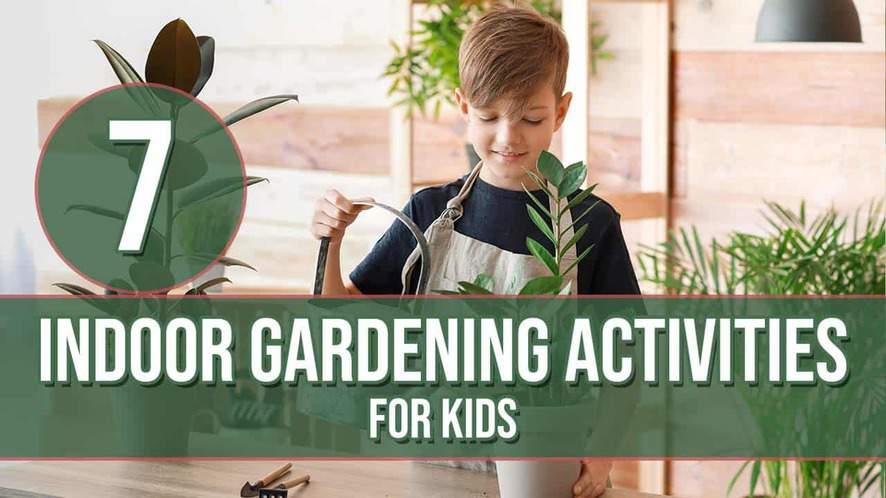 7 Indoor Gardening Activities for Kids