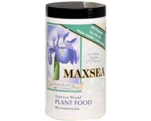 Maxsea Plant Food Fertilizer
