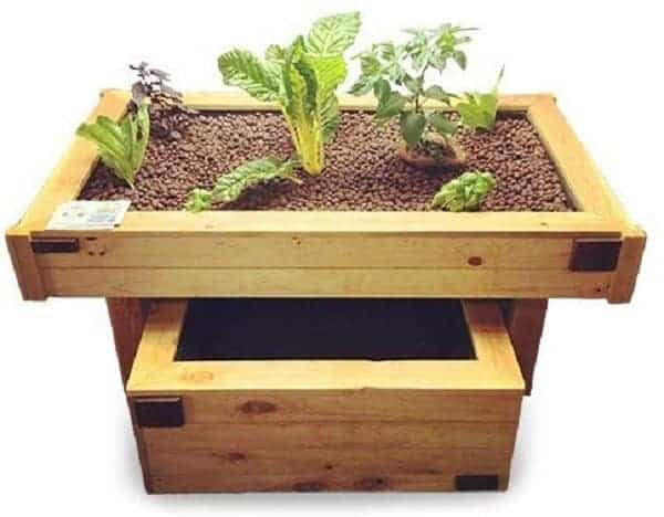 Professional Aquabox Aquaponics Kit