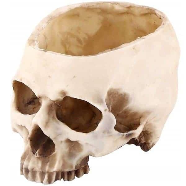 Resin Skull Planter