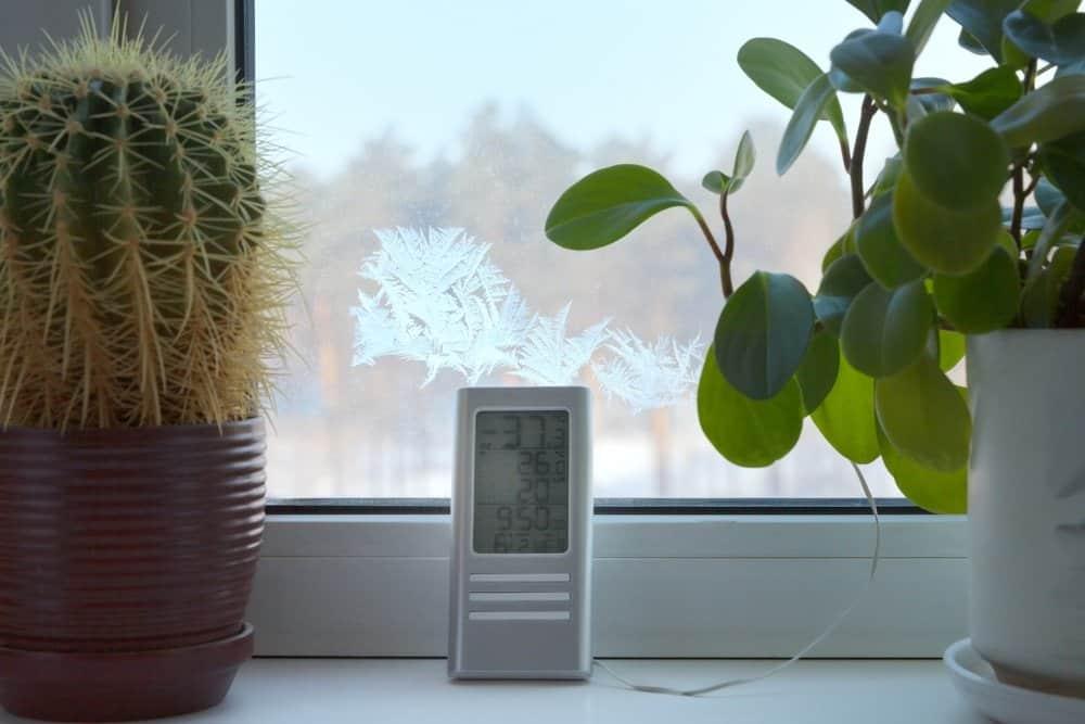 Temperature of Indoor Garden