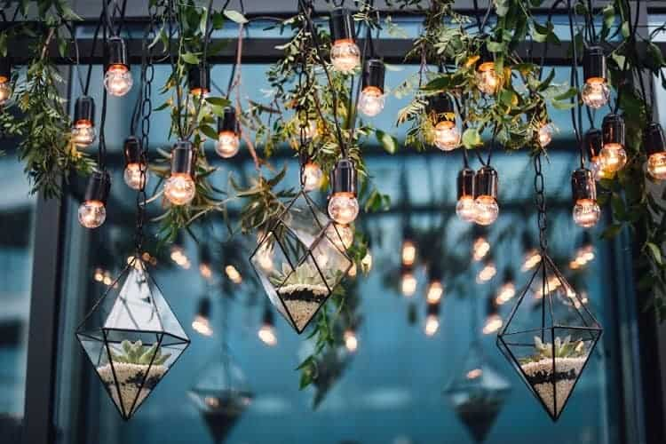 Hanging Glass Garden