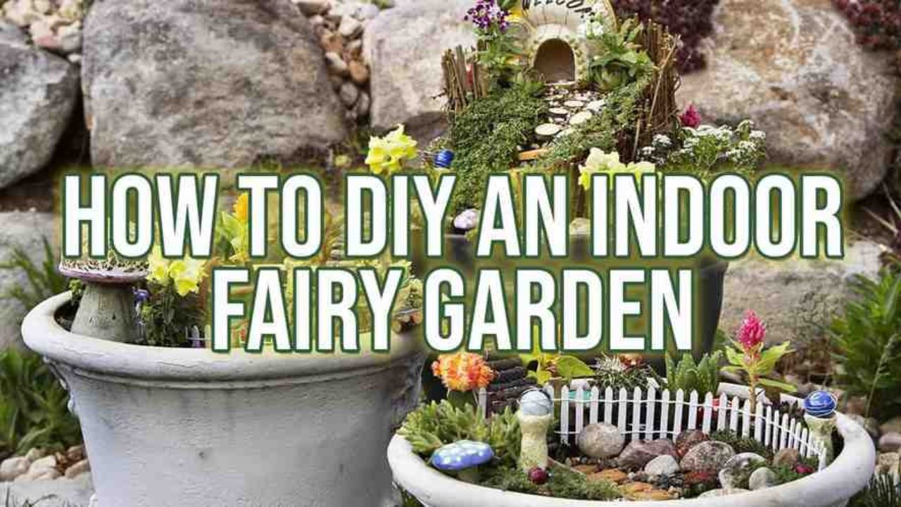 How To Diy An Indoor Fairy Garden Indoor Gardening