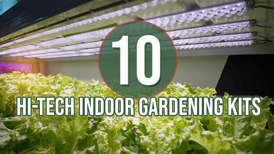 Top 10 Hi-Tech Indoor Gardening Kits