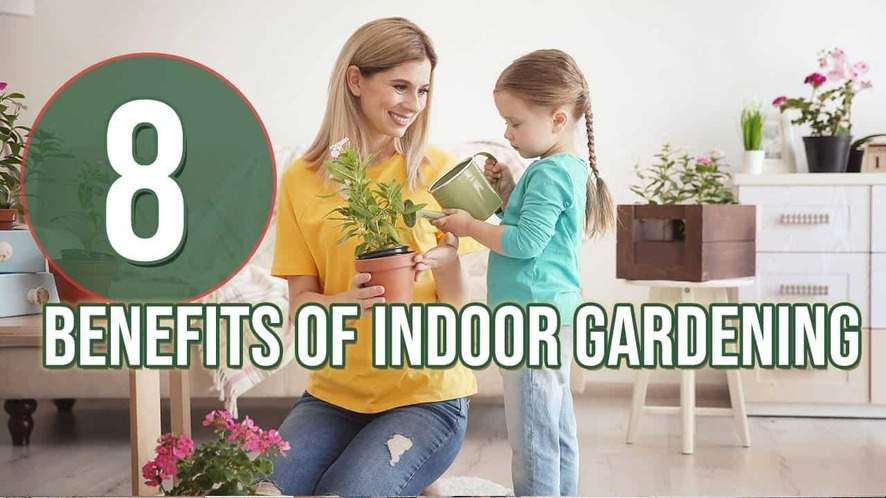 8 Benefits of Indoor Gardening
