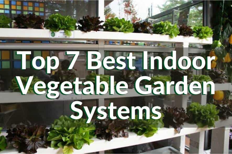 7 Best Garden Systems