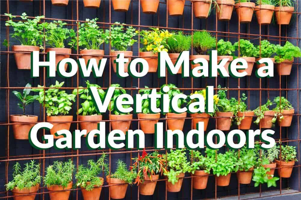 How to Make a Vertical Garden Indoors