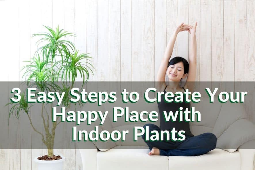 3 Easy Steps to Create Your Happy Place with Indoor Plants