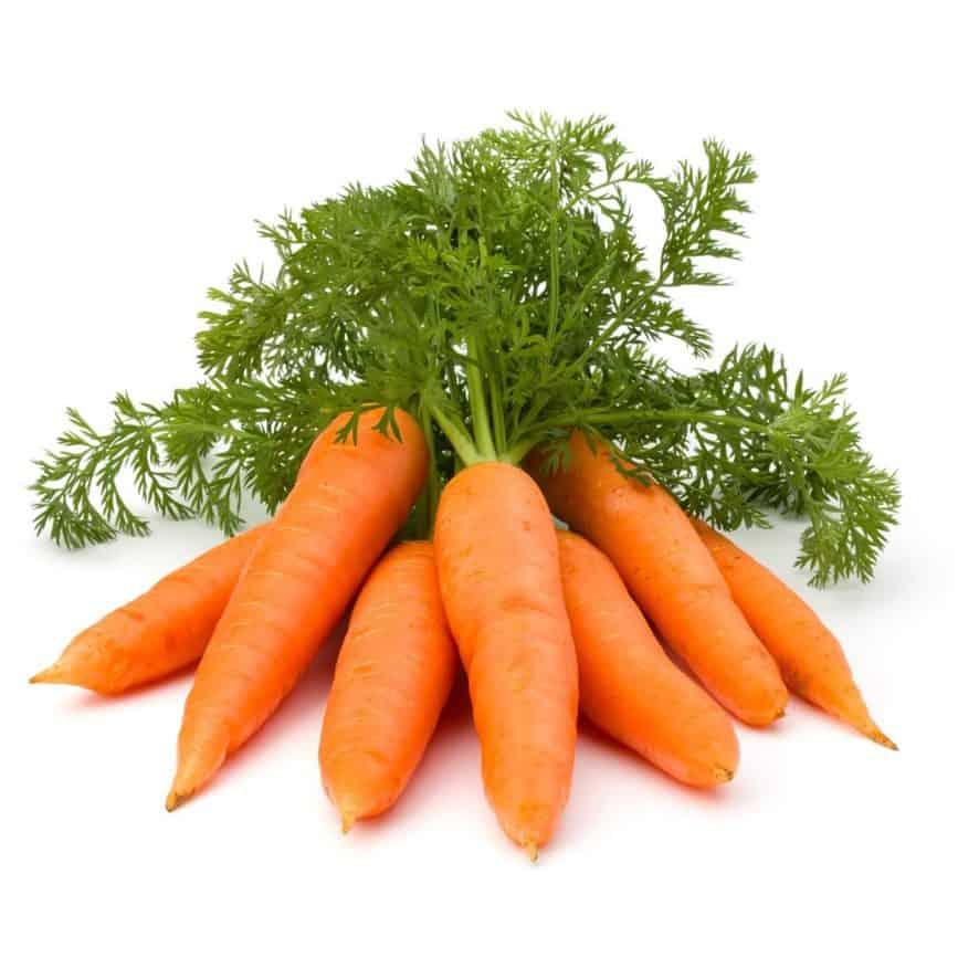 Grow Carrots Indoors