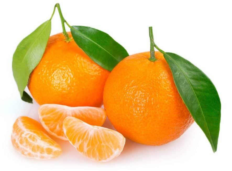 Grow Mandarin Oranges Indoors