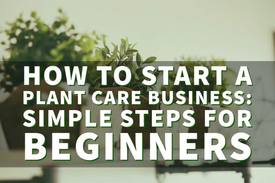 How to start a plant care business