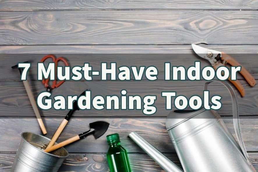 7 Must-have Indoor Gardening Tools