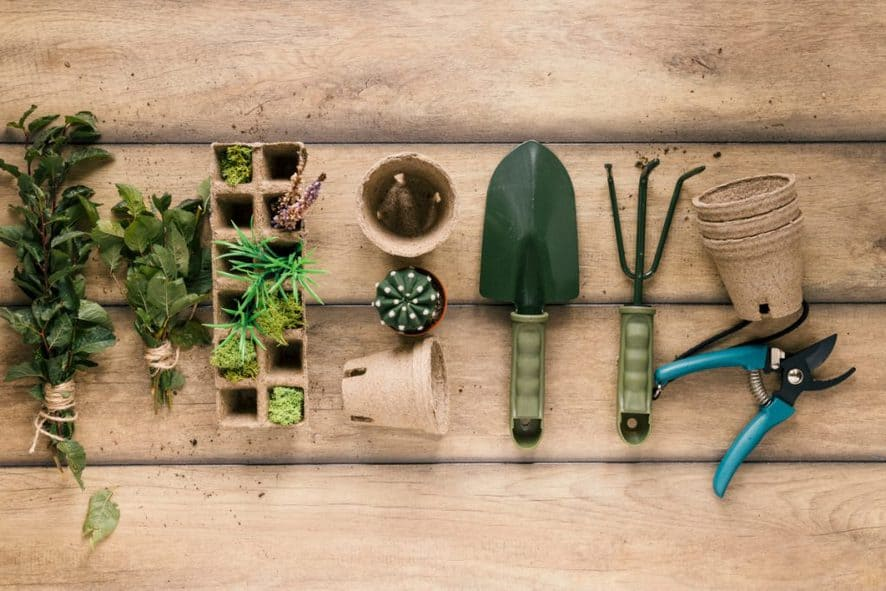 Tools for Indoor Gardening Design Ideas
