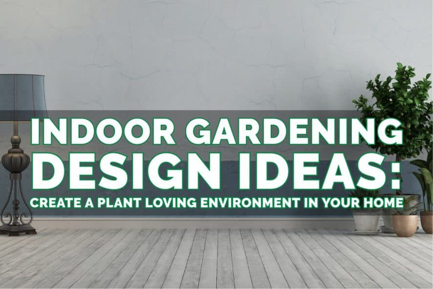 Design Ideas for Indoor Plants