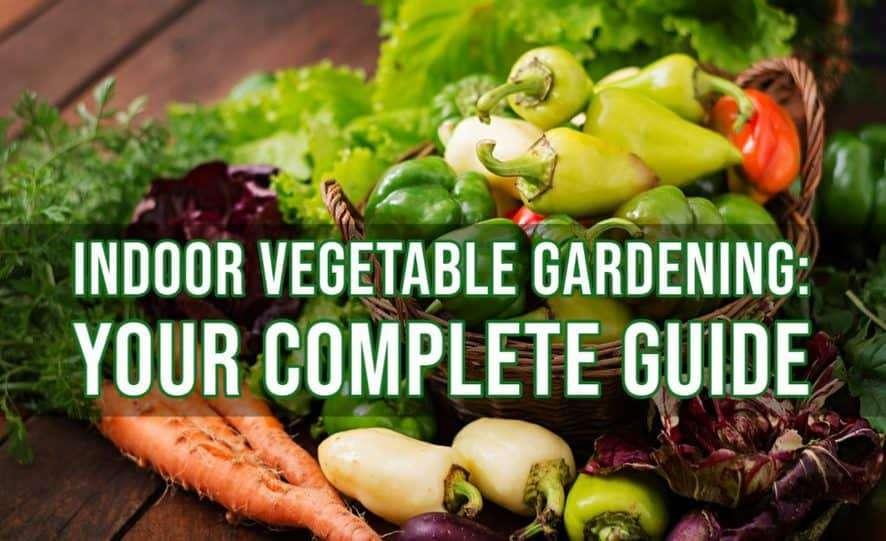 Indoor Vegetable Gardening_ Your Complete Guide