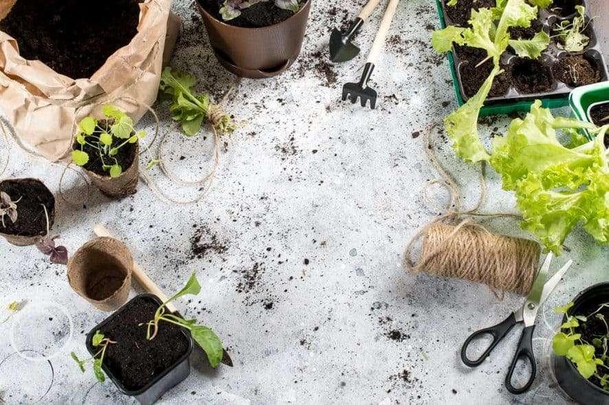 Materials for Indoor Gardening
