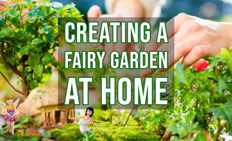 Creating a Fairy Garden at Home