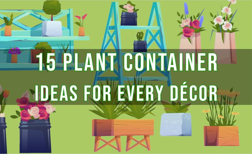 15 Plant Container Ideas for Every Décor