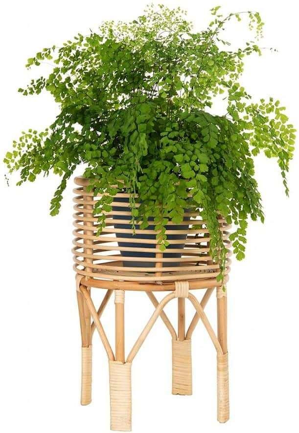 Rattan Plant Stand