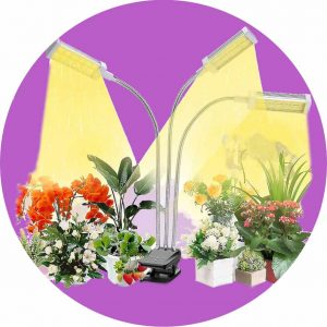 Recommended Clip-on Garden Light