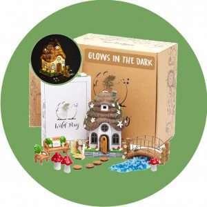 Recommended Fairy Garden Kit