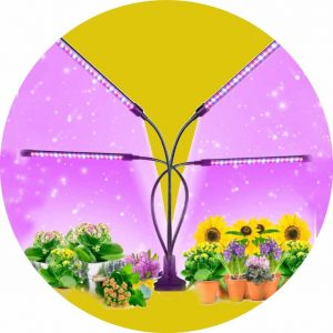 Recommended Free Standing Garden Light