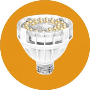 Recommended Grow Light Bulb